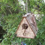 birdbox-mini-3-1-150x150 - Birdies birdies and birdies!
